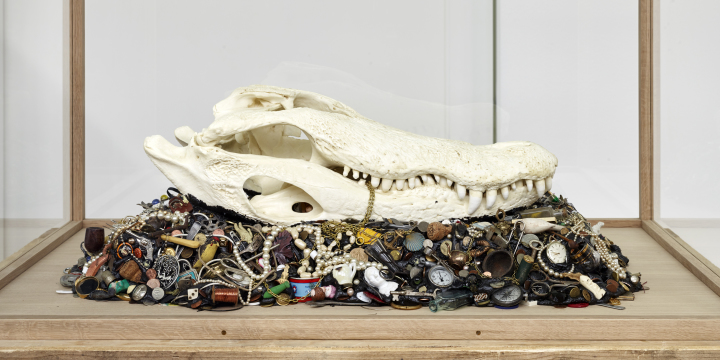 Mark Dion Alligator Mississippiensis, 2015, Foto: Simon Vogel Courtesy: the artist and Galerie Nagel Draxler, Berlin/Cologne